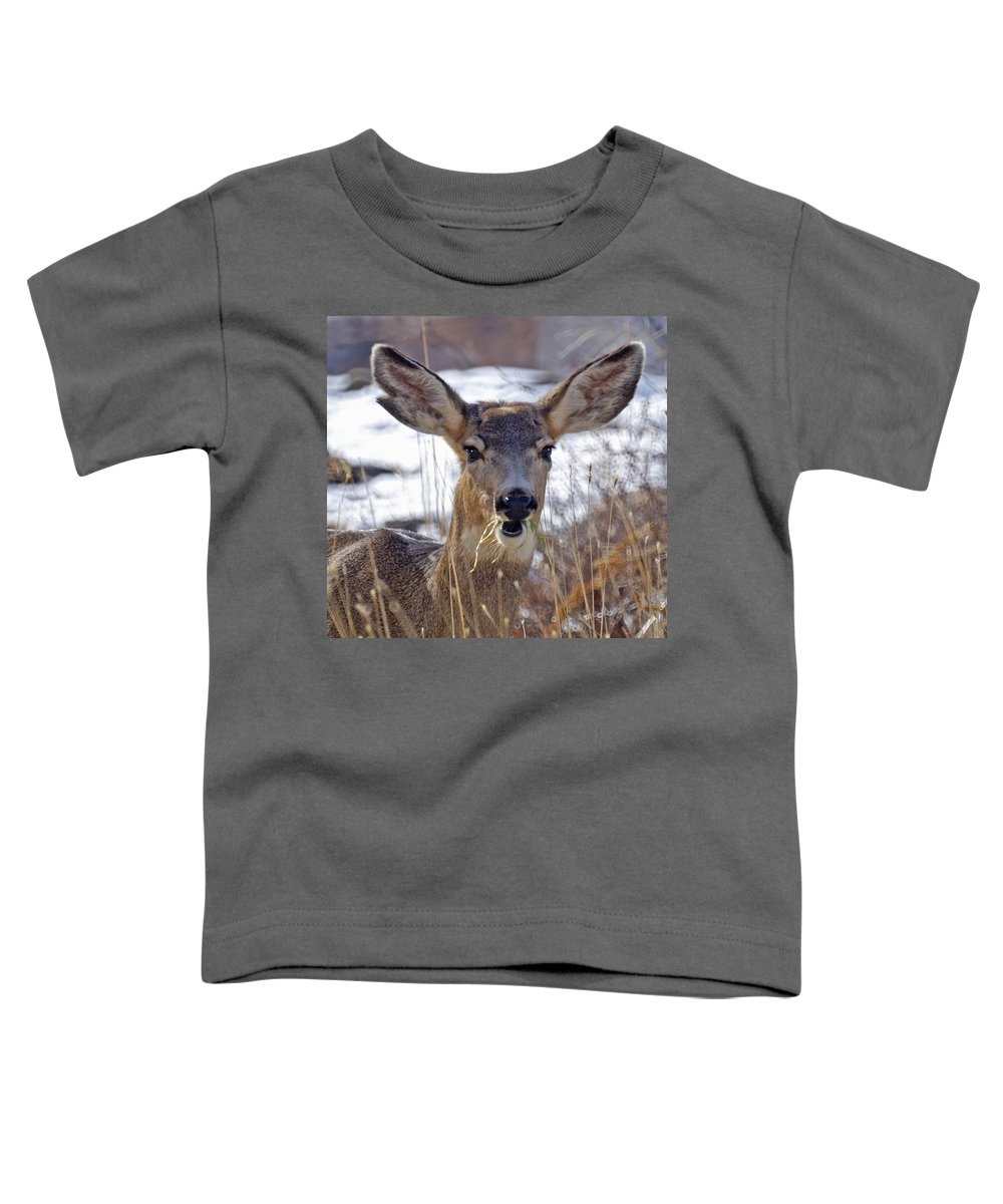 Doe Toddler T-Shirt featuring the photograph Doe by Heather Coen