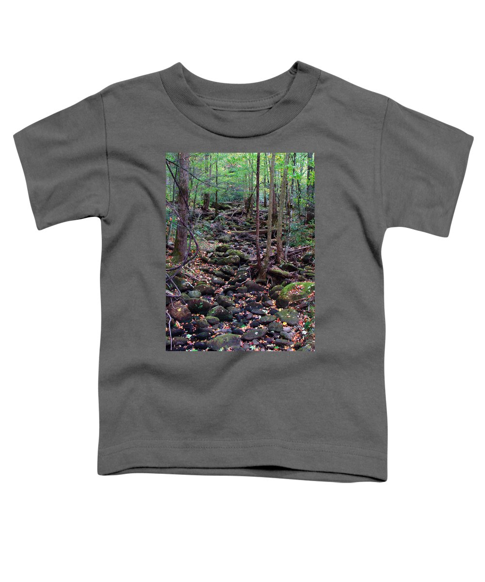 River Toddler T-Shirt featuring the photograph Dry River Bed- Autumn by Nancy Mueller