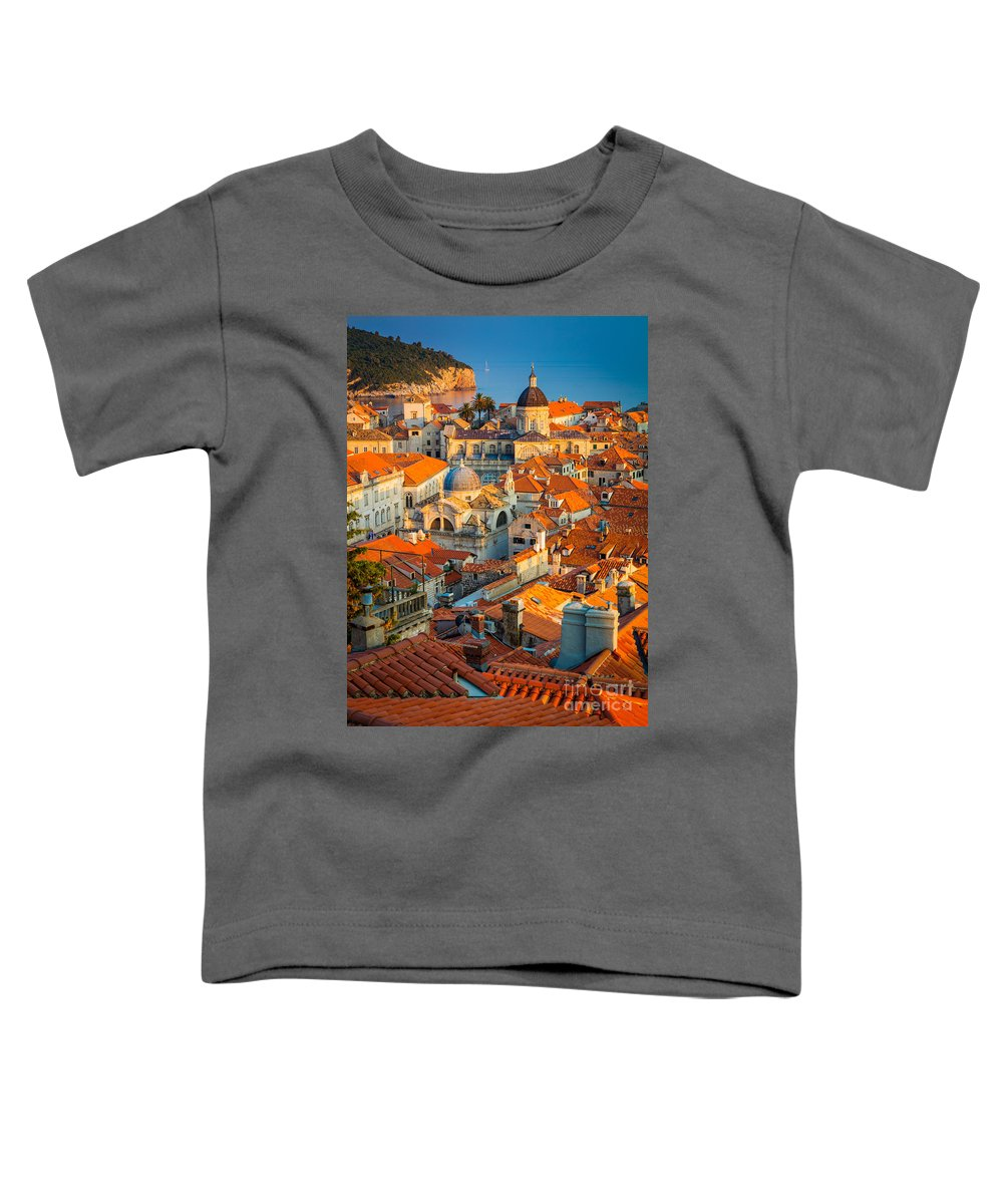 Fortification Toddler T-Shirts