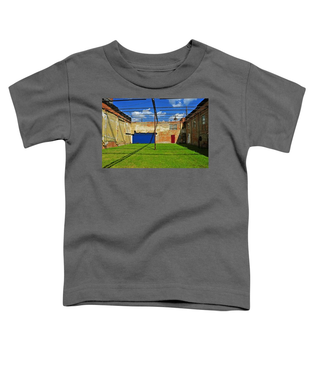 Skiphunt Toddler T-Shirt featuring the photograph Eco-store by Skip Hunt