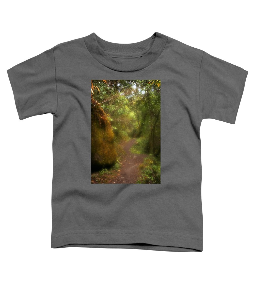 Path Toddler T-Shirt featuring the photograph El Camino by Patrick Klauss