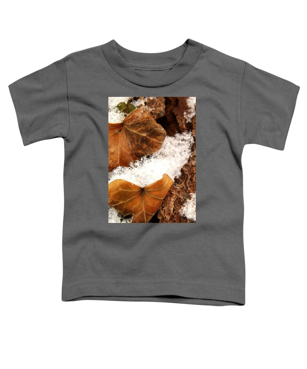 Fall Toddler T-Shirt featuring the photograph Fall And Winter by Gaby Swanson