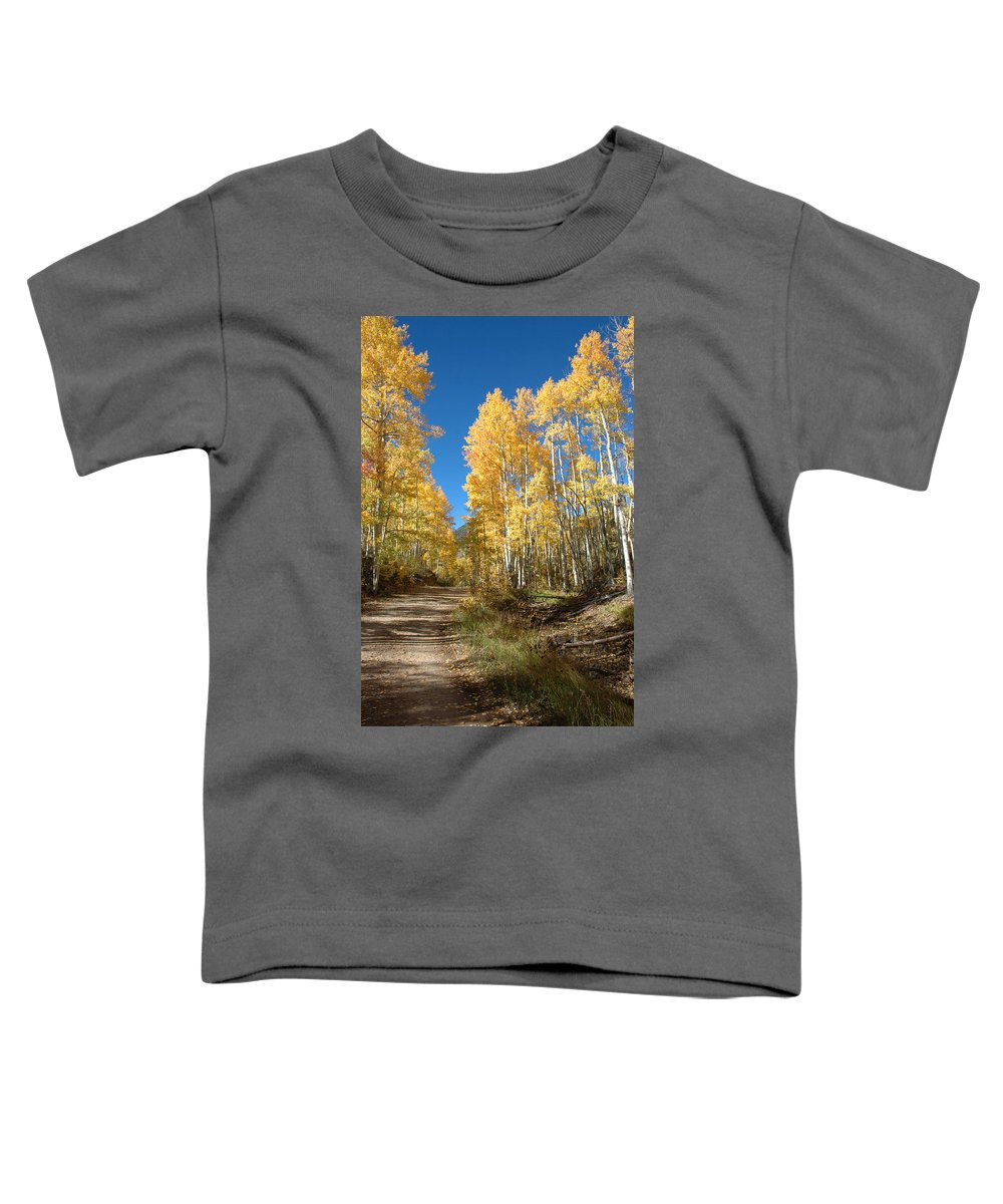 Landscape Toddler T-Shirt featuring the photograph Fall Road by Jerry McElroy