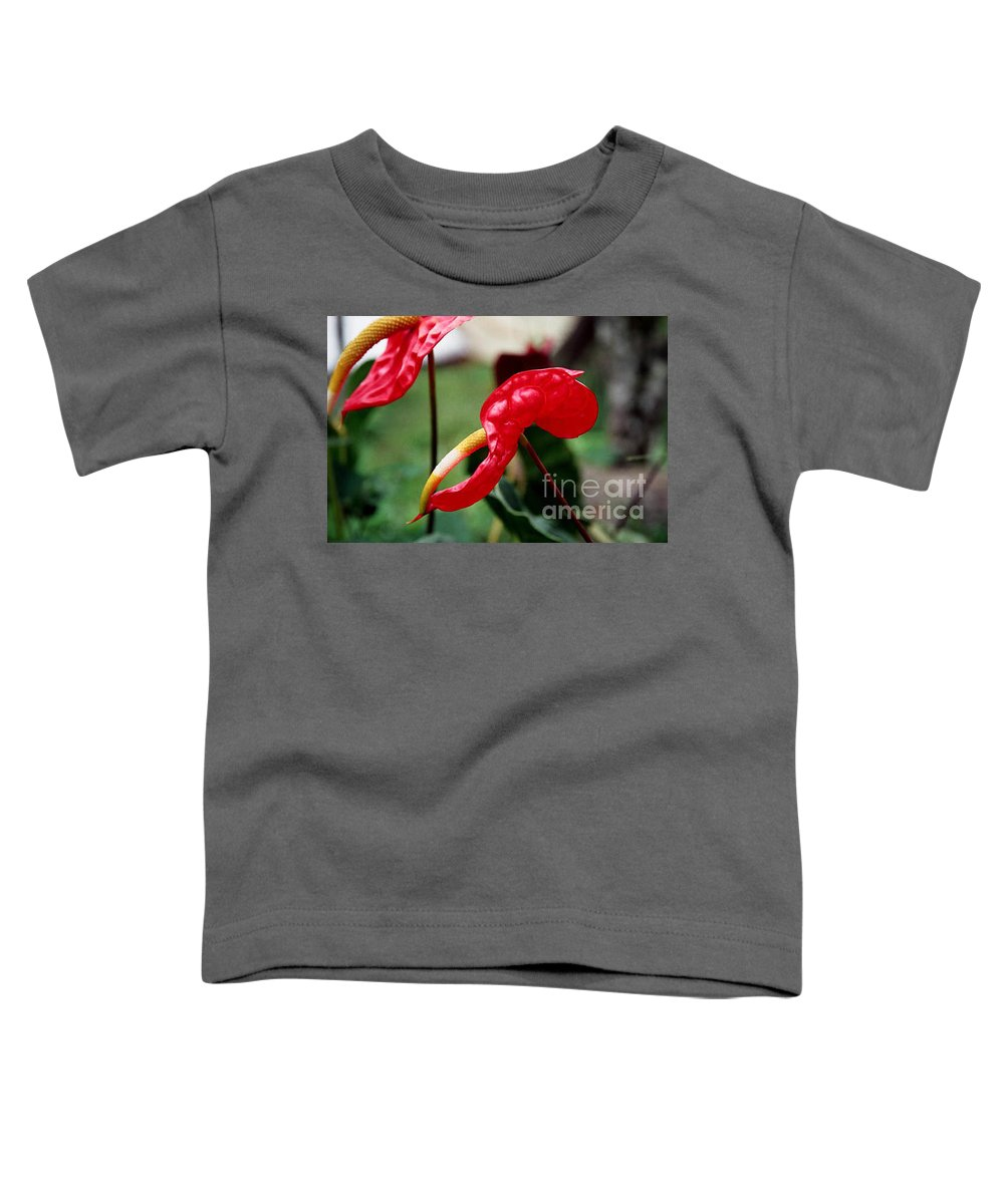 Exotic Flowers Toddler T-Shirt featuring the photograph Flamingo Flower by Kathy McClure