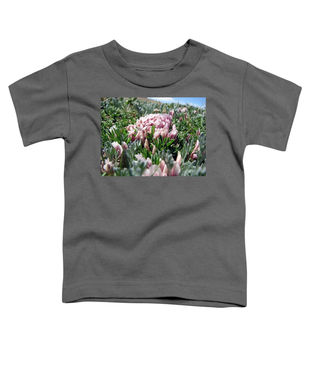 Flowers Toddler T-Shirt featuring the photograph Flowers In The Alpine Tundra by Amanda Barcon