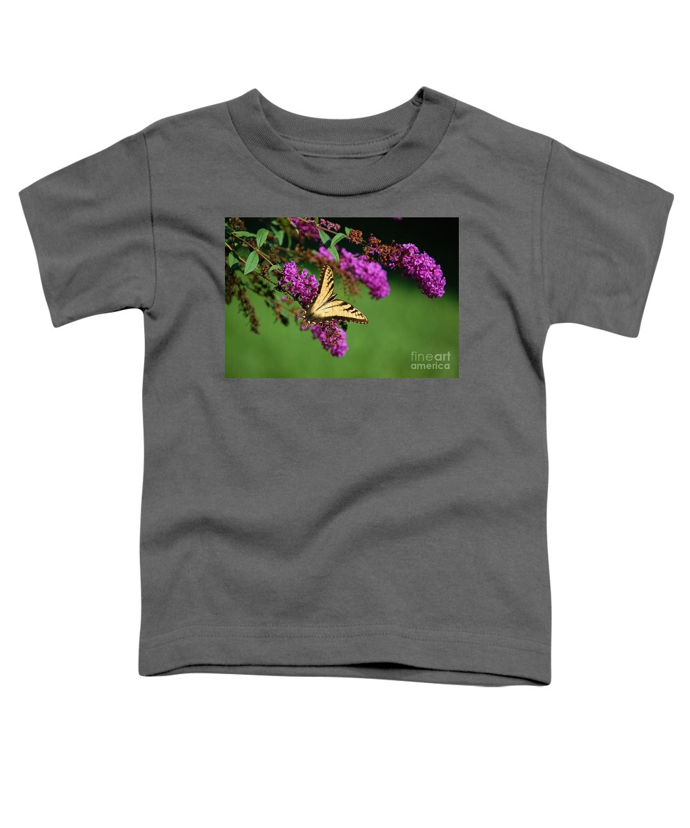 Butterfly Toddler T-Shirt featuring the photograph Freedom by Debbi Granruth