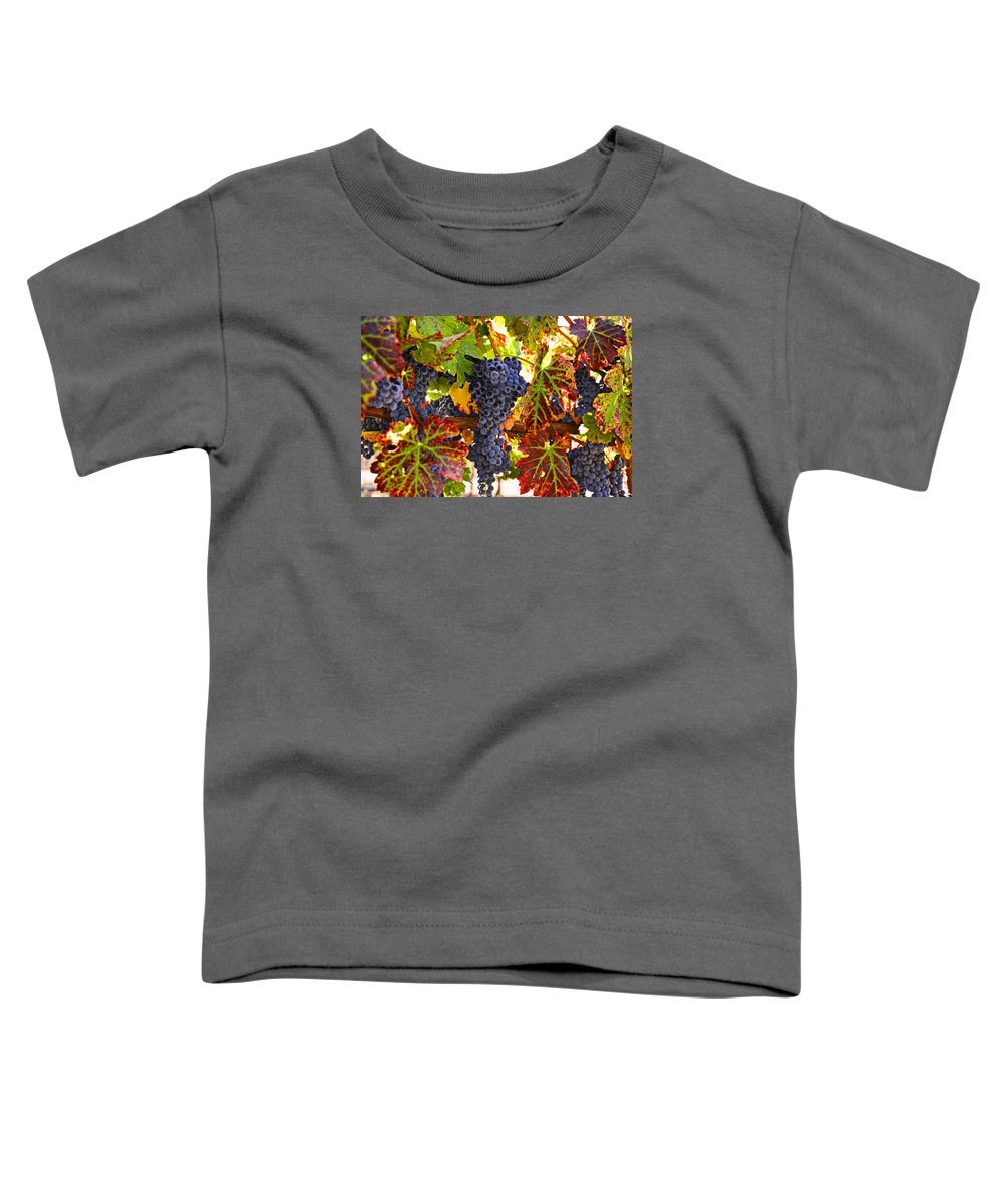 Grapes Toddler T-Shirt featuring the photograph Grapes on vine in vineyards by Garry Gay