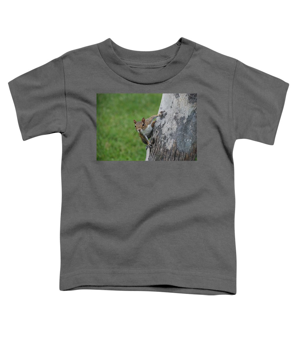 Squirrel Toddler T-Shirt featuring the photograph Hanging On by Rob Hans