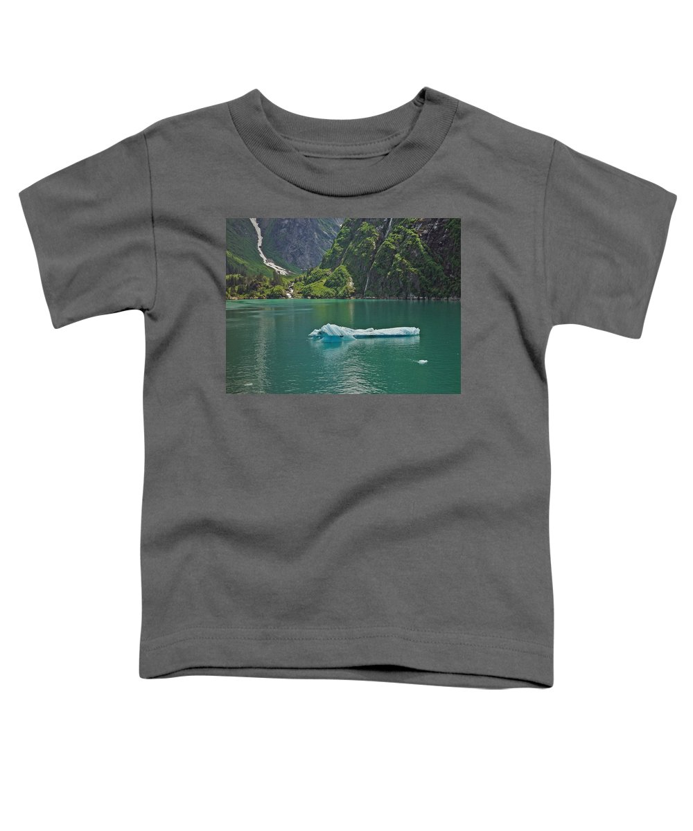 Iceburg Toddler T-Shirt featuring the photograph Ice Tracy Arm Alaska by Heather Coen