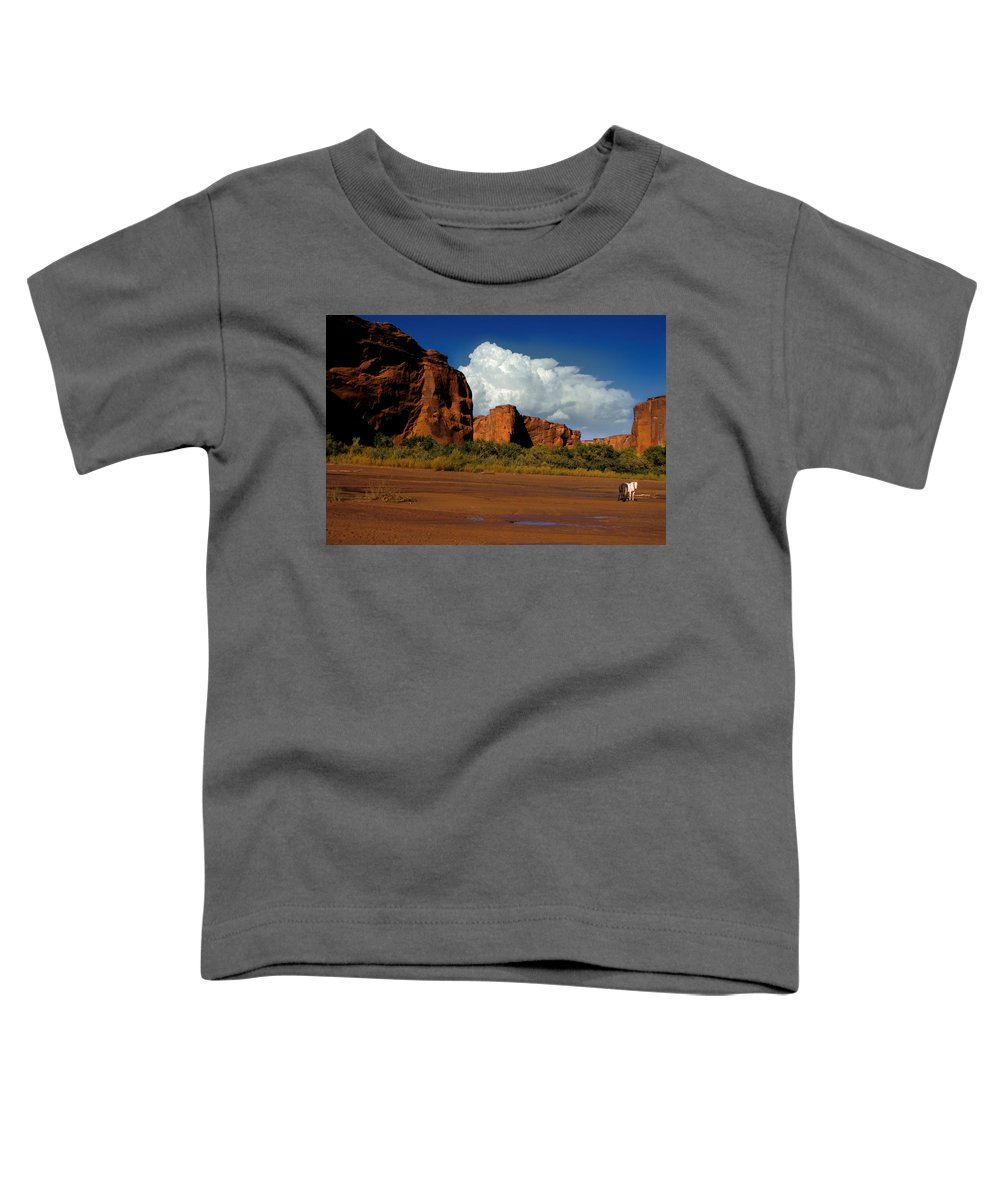 Horses Toddler T-Shirt featuring the photograph Indian Ponies In The Canyon by Jerry McElroy