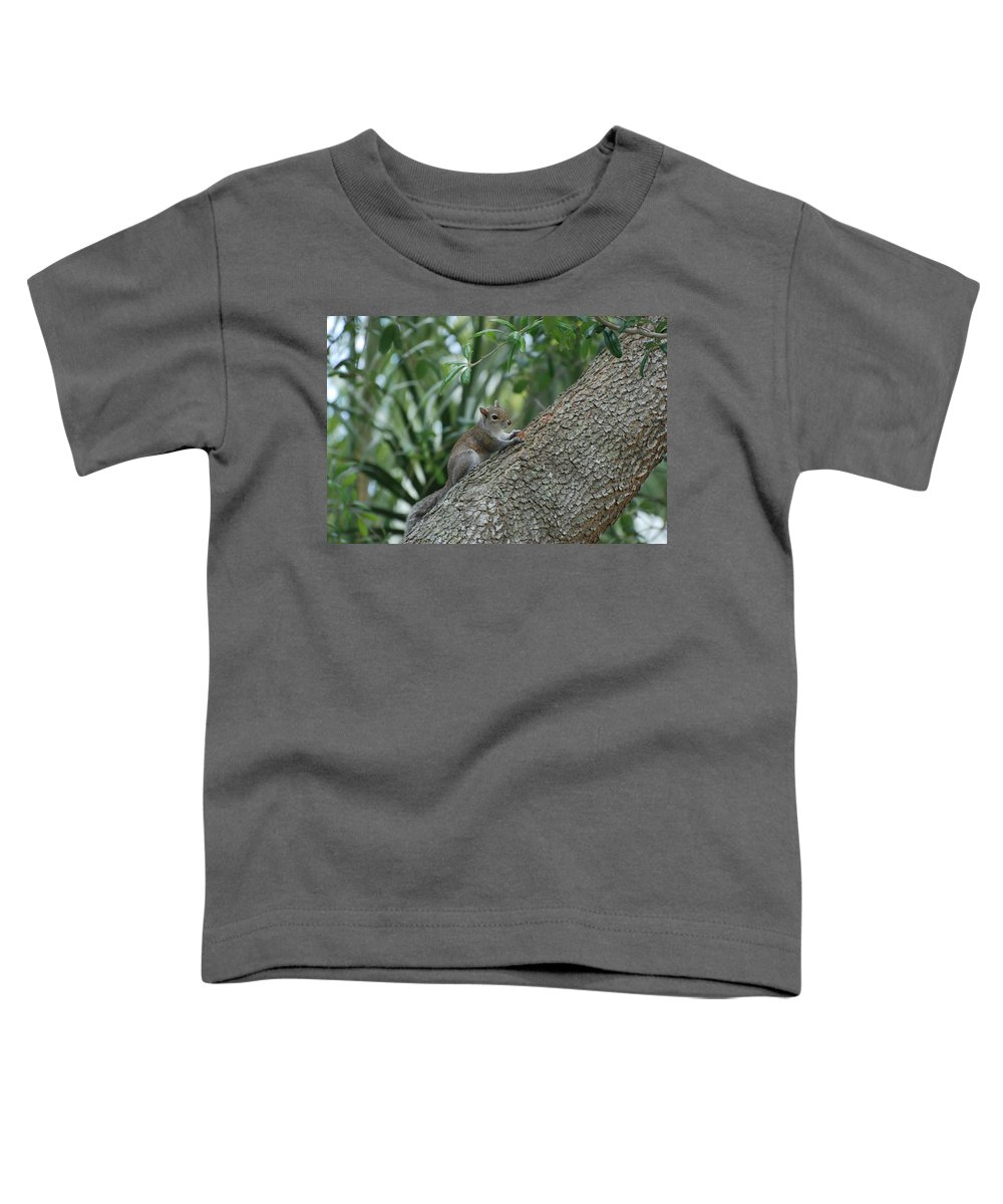 Squirrels Toddler T-Shirt featuring the photograph Just Chilling Out by Rob Hans