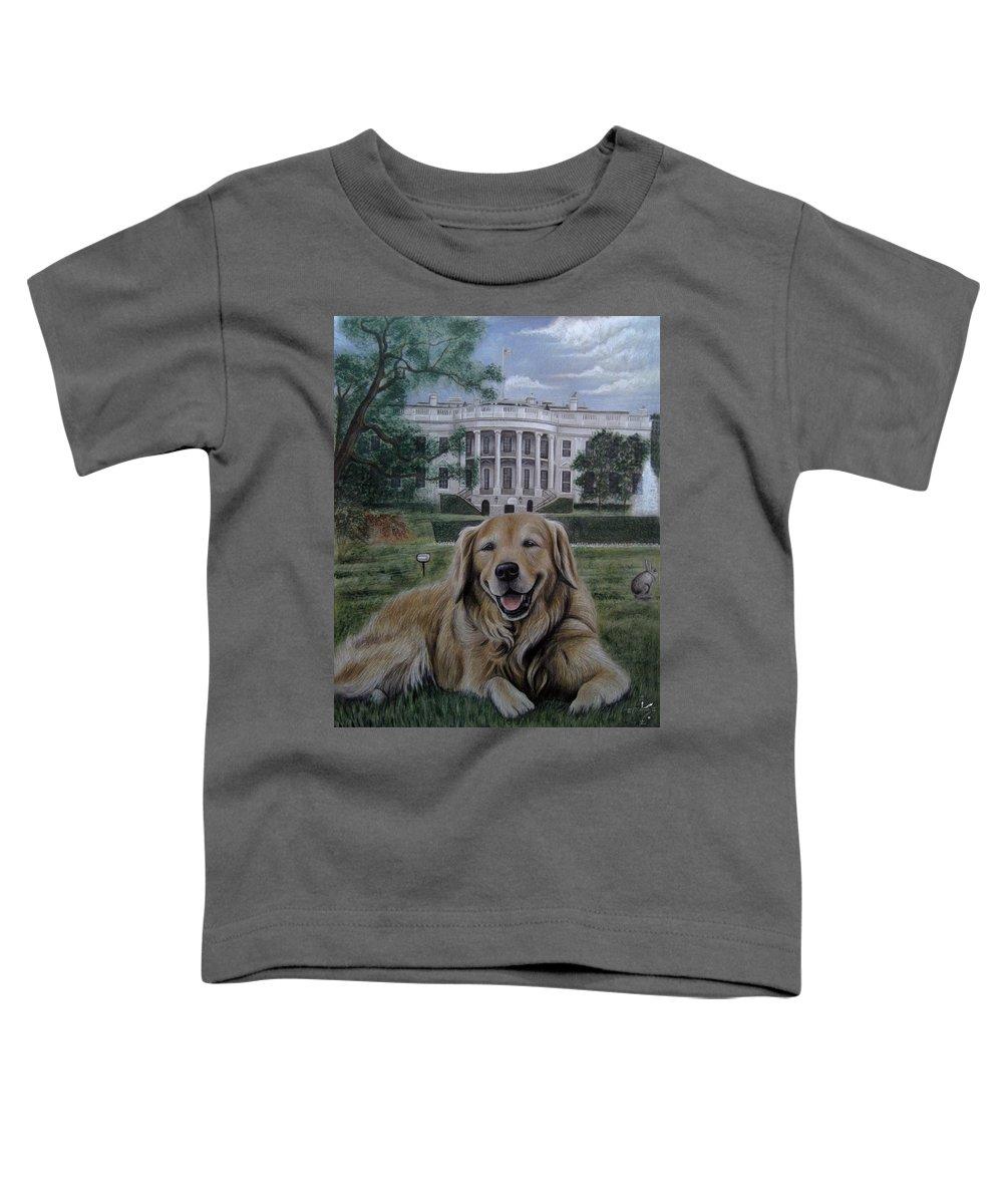 Golden Grass Toddler T-Shirts