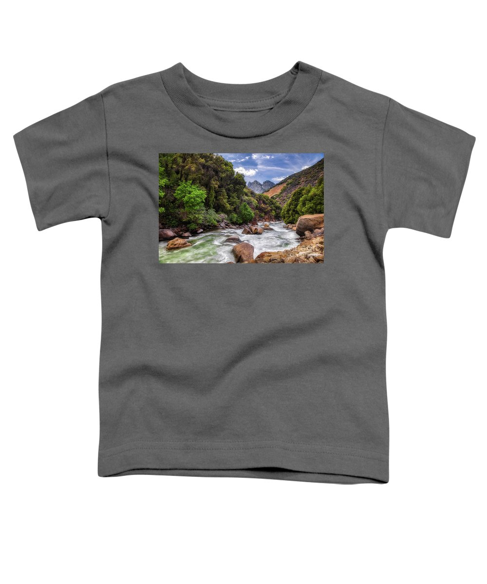 Snowmelt Toddler T-Shirts