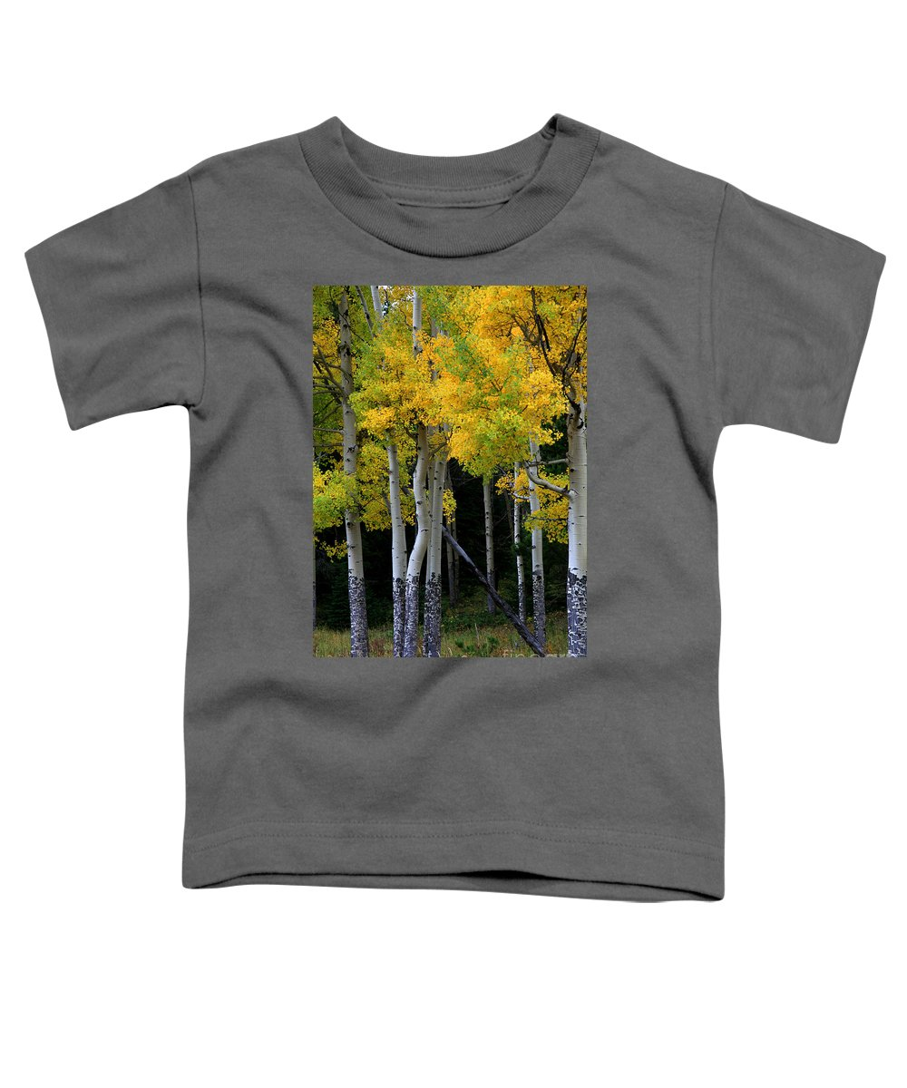 Aspens Toddler T-Shirt featuring the photograph Leaning Aspen by Timothy Johnson