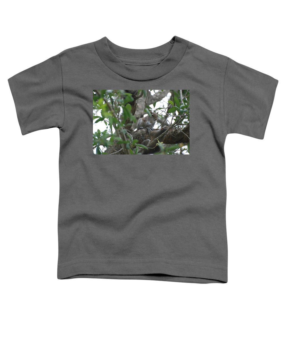 Squirrel Toddler T-Shirt featuring the photograph Lending A Helping Hand by Rob Hans
