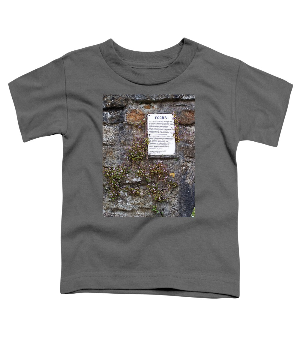 Irish Toddler T-Shirt featuring the photograph Living Wall At Donegal Castle Ireland by Teresa Mucha