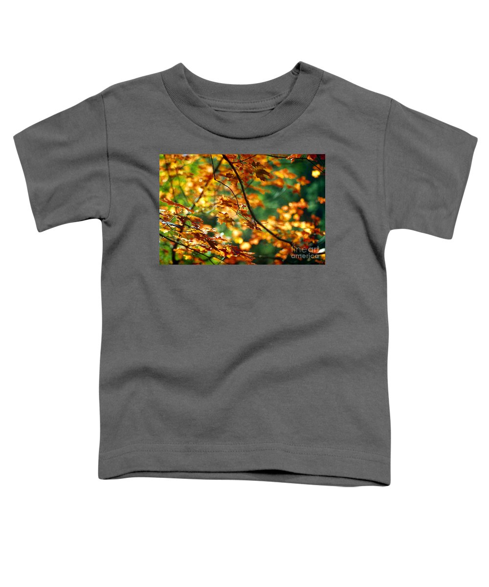 Fall Color Toddler T-Shirt featuring the photograph Lost In Leaves by Kathy McClure
