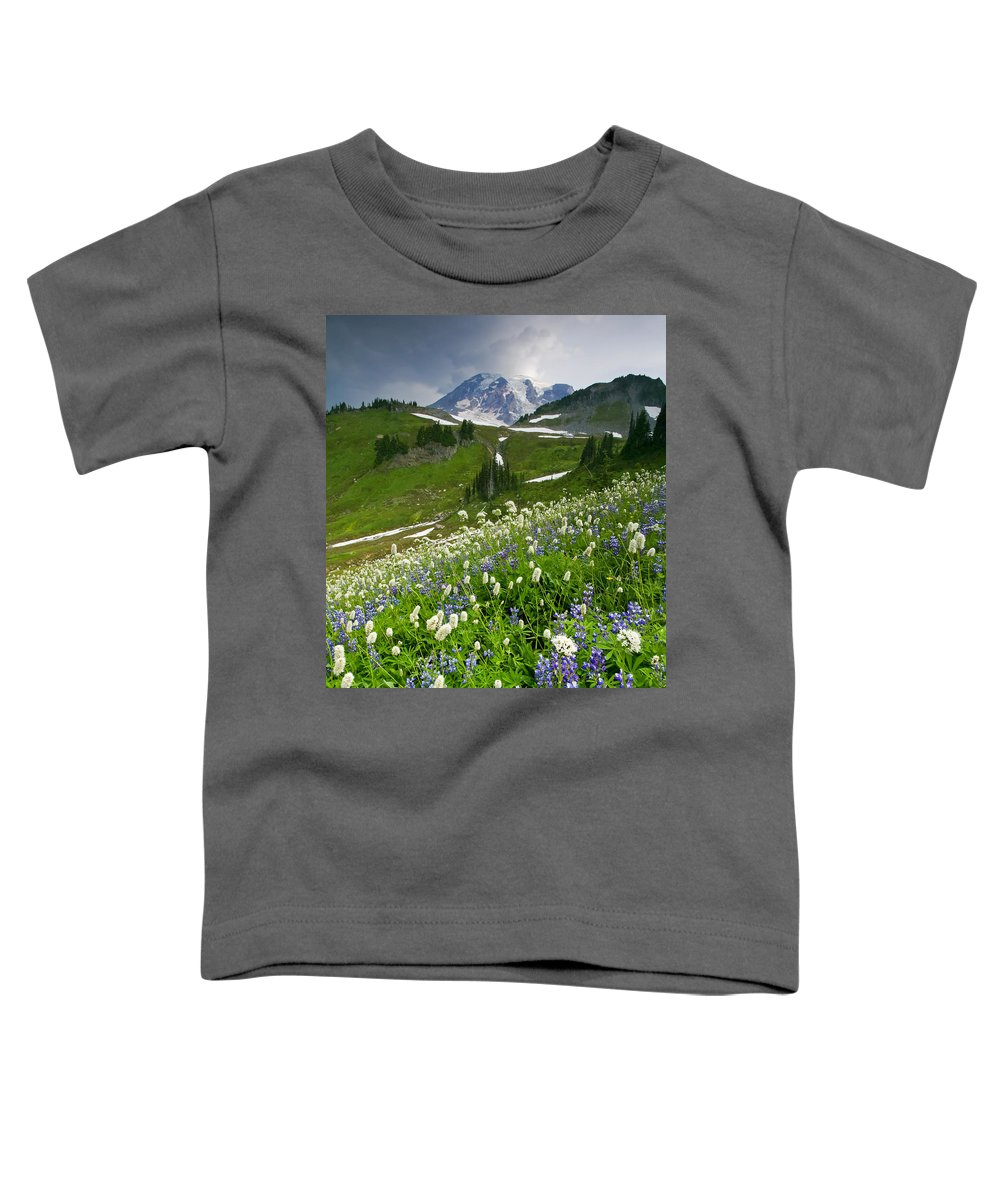 Rainier Toddler T-Shirt featuring the photograph Lupine Storm by Mike Dawson