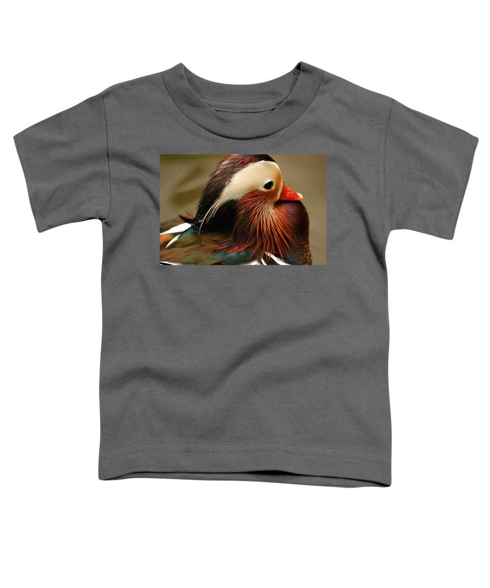 Mandarin Duck Toddler T-Shirt featuring the photograph Male Mandarin Duck China by Ralph A Ledergerber-Photography