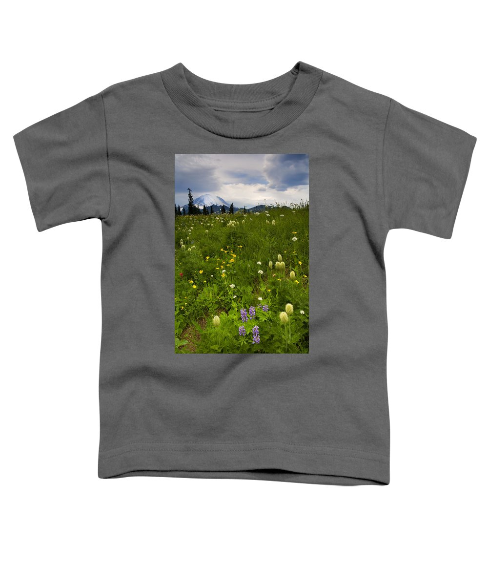 Rainier Toddler T-Shirt featuring the photograph Meadow Beneath The Storm by Mike Dawson