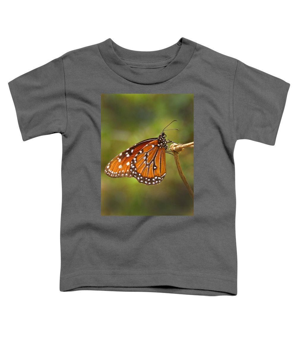 Monarch Toddler T-Shirt featuring the photograph Monarch Butterfly by Heather Coen