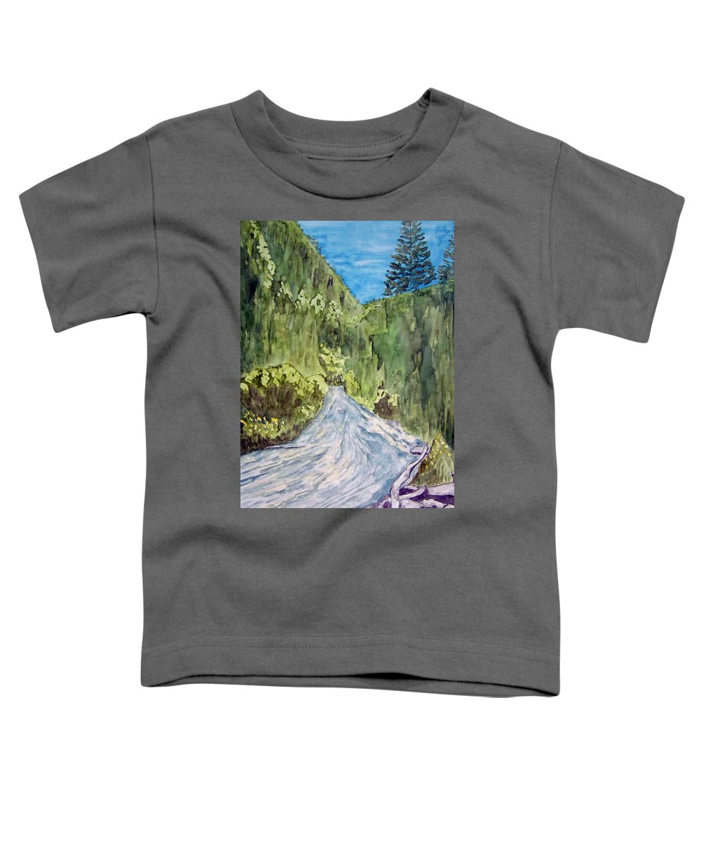 New Mexico Art Toddler T-Shirt featuring the painting New Mexico Canyon Impression by Larry Wright