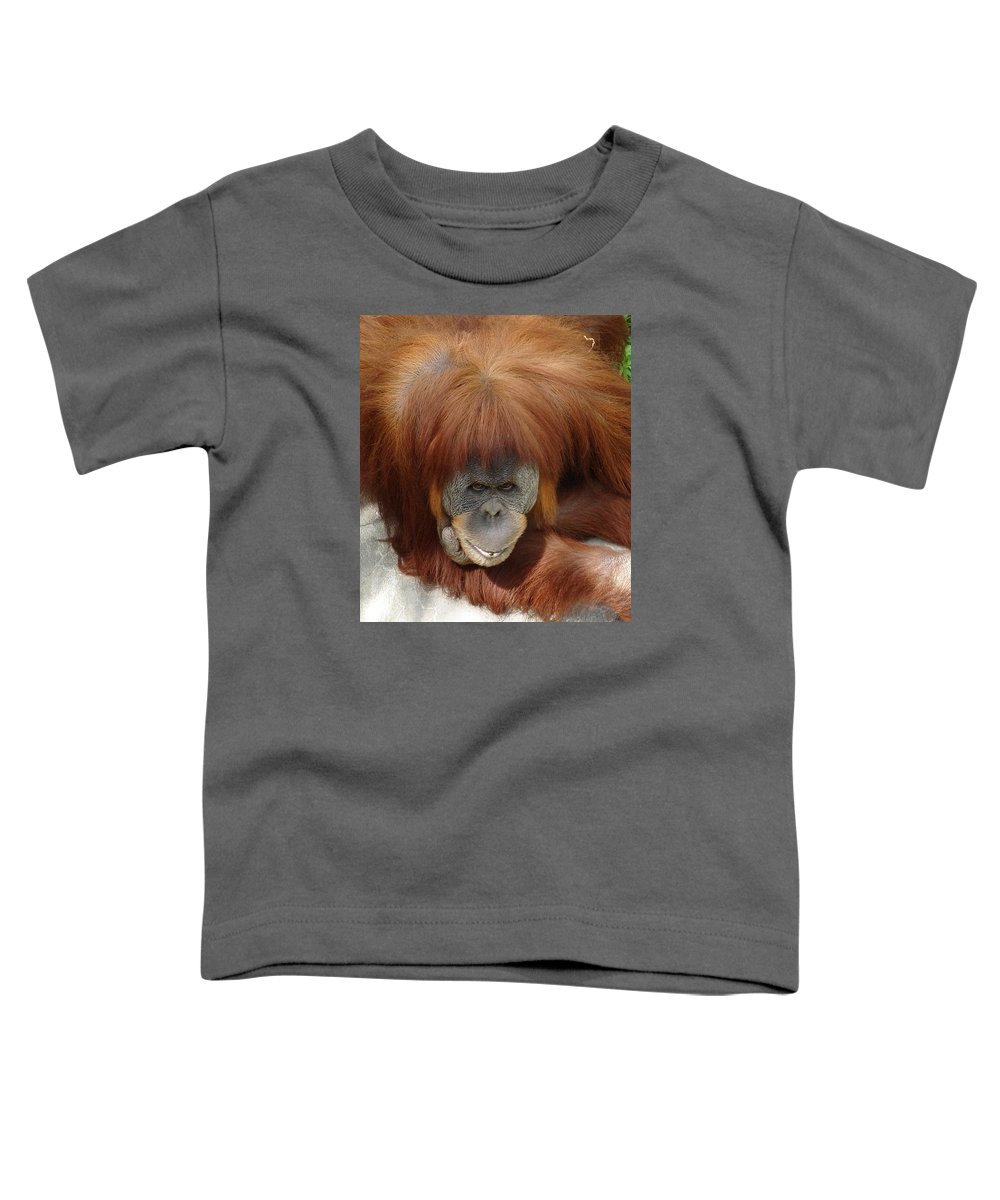 Red Ape Eyes Toddler T-Shirt featuring the photograph Orangutan by Luciana Seymour