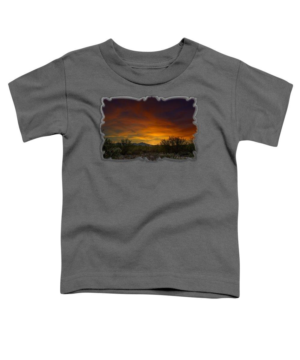 Kitt Peak Toddler T-Shirts