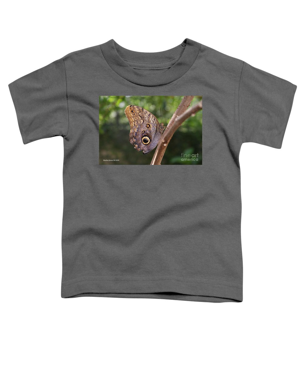 Butterfly Toddler T-Shirt featuring the photograph Owls don't always have feathers by Shelley Jones
