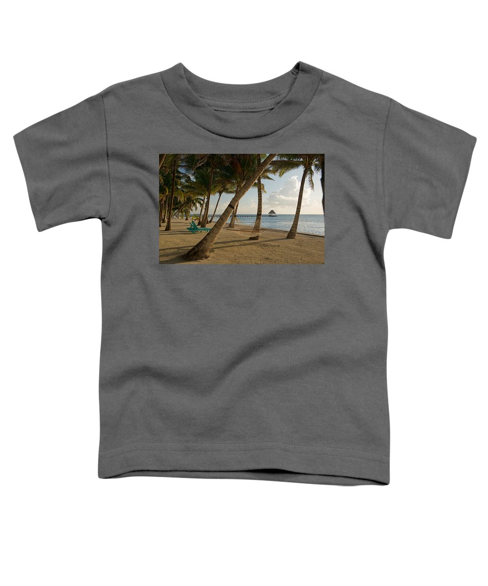 Photography Toddler T-Shirt featuring the photograph Palm Trees And Hammock On San Pedro by Panoramic Images