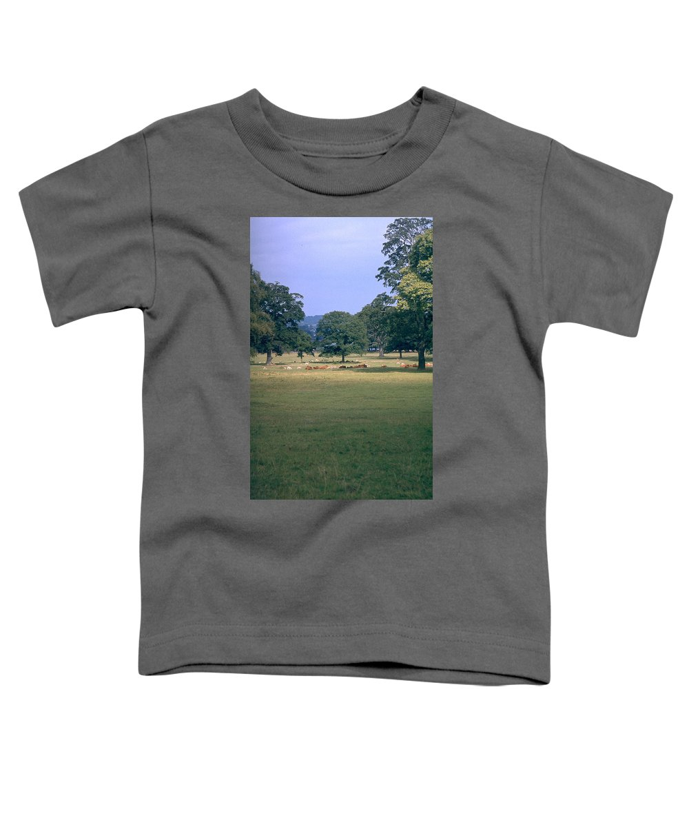 Great Britain Toddler T-Shirt featuring the photograph Pasture by Flavia Westerwelle