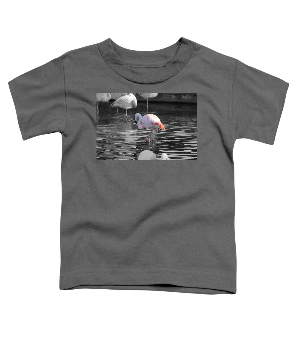 Palm Desert California Toddler T-Shirt featuring the photograph Pinky by Colleen Cornelius