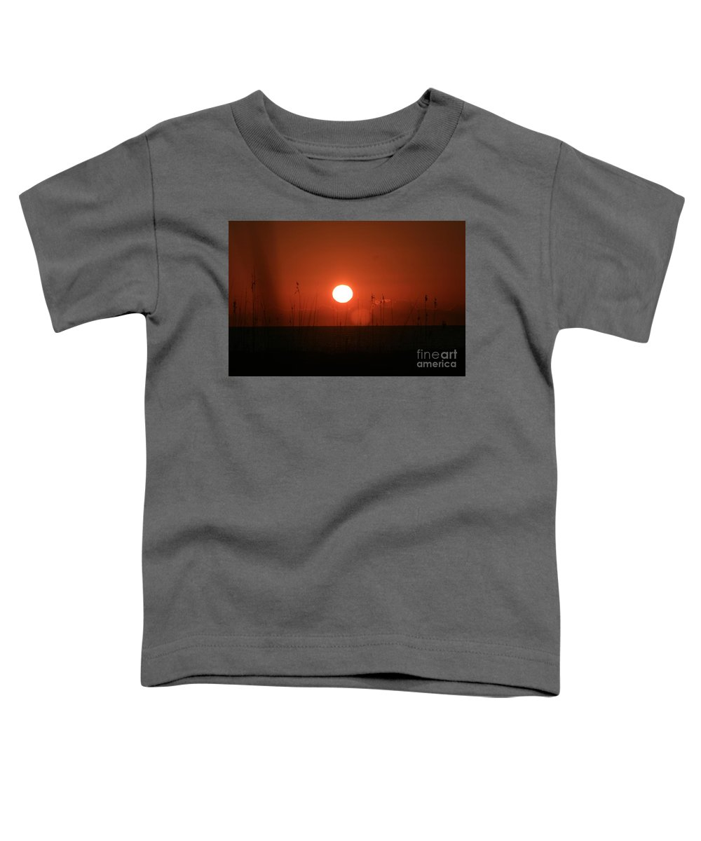 Sunset Toddler T-Shirt featuring the photograph Red Sunset And Grasses by Nadine Rippelmeyer