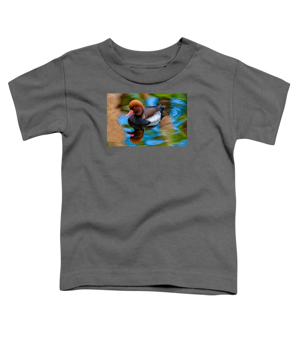 Bird Toddler T-Shirt featuring the photograph Resting In Pool Of Colors by Christopher Holmes