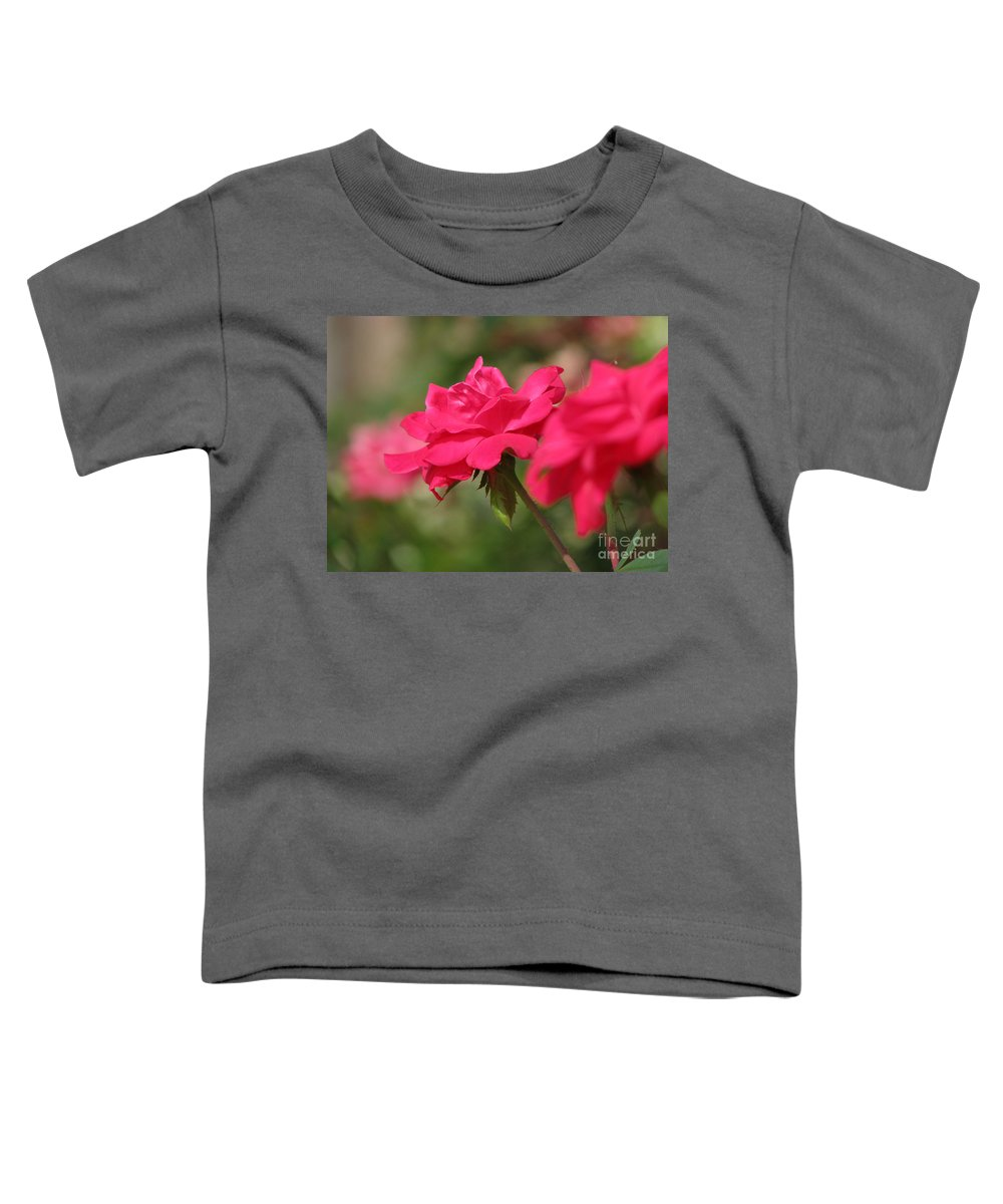 Rose Toddler T-Shirt featuring the photograph Roses by Amanda Barcon