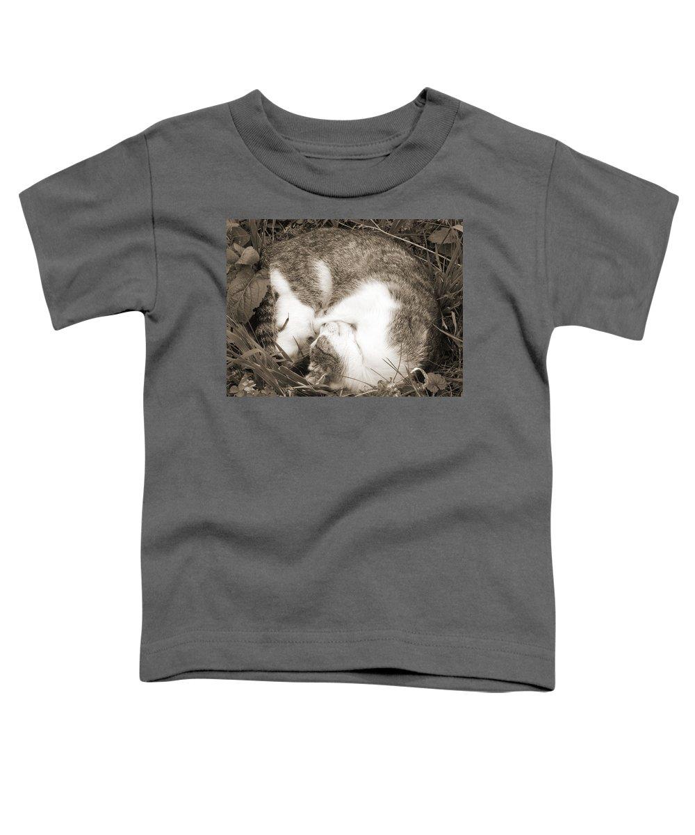 Pets Toddler T-Shirt featuring the photograph Sleeping by Daniel Csoka