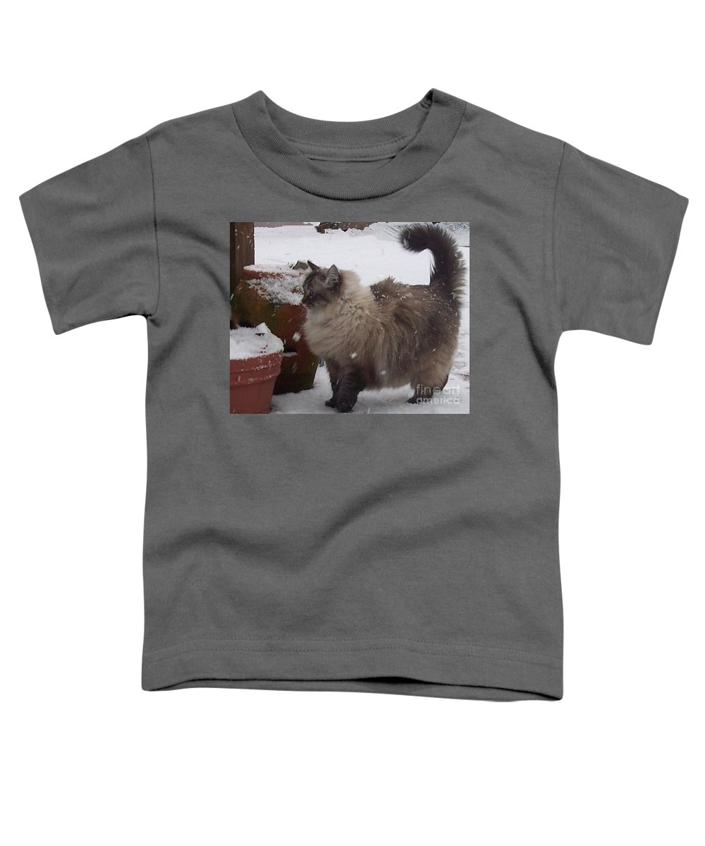 Cats Toddler T-Shirt featuring the photograph Snow Kitty by Debbi Granruth