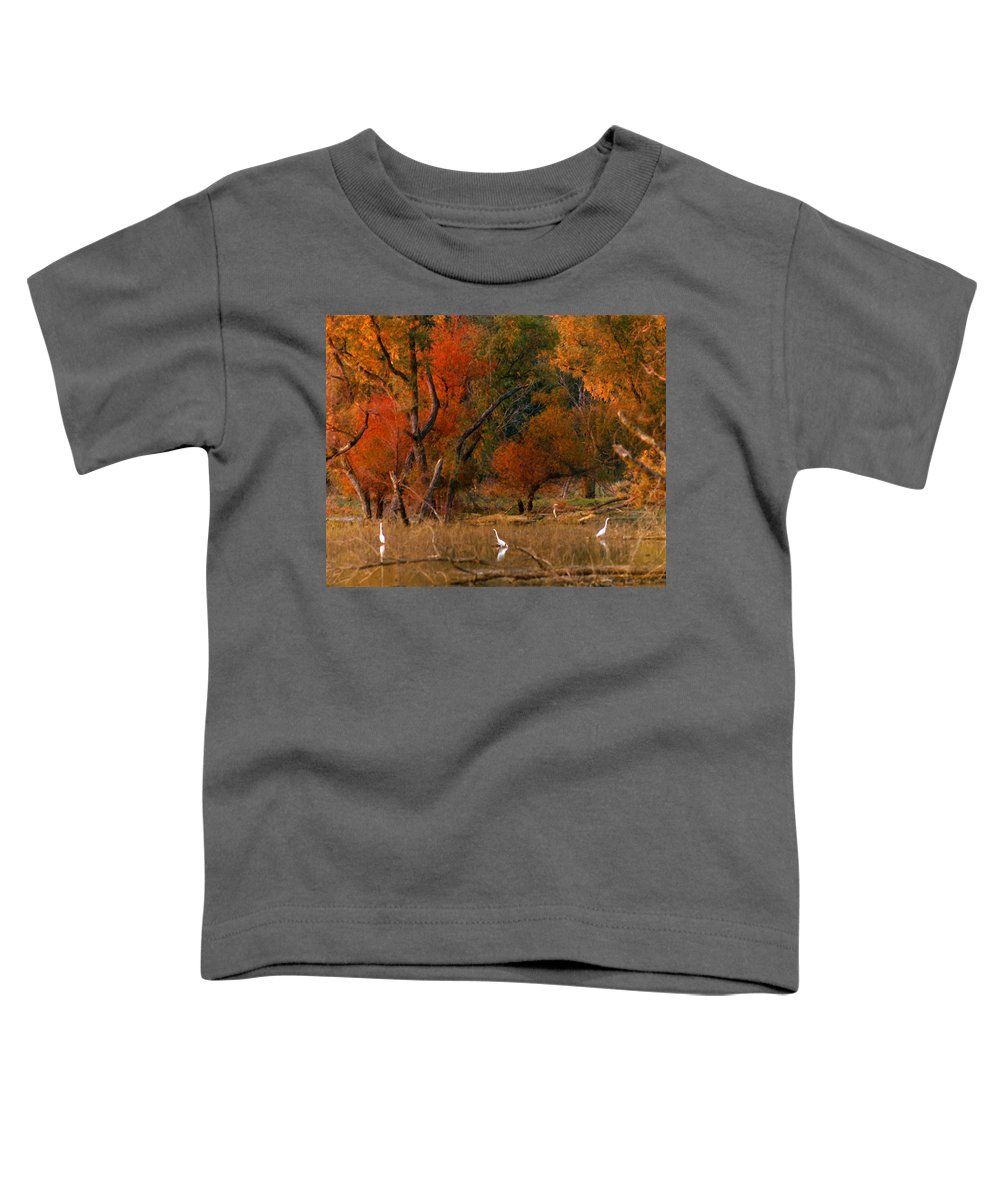 Landscape Toddler T-Shirt featuring the photograph Squaw Creek Egrets by Steve Karol