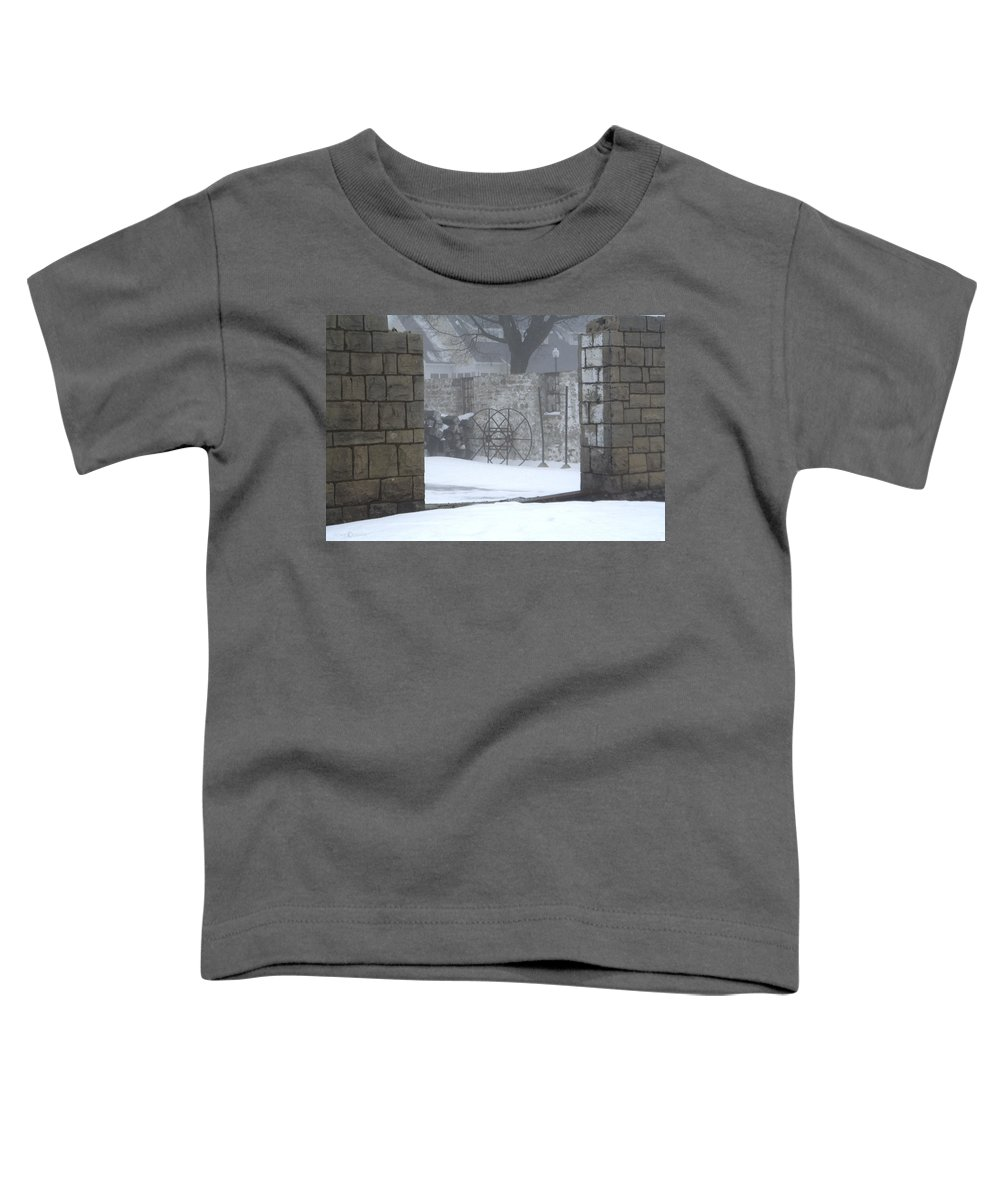 Winter Toddler T-Shirt featuring the photograph Stone Cellar by Tim Nyberg