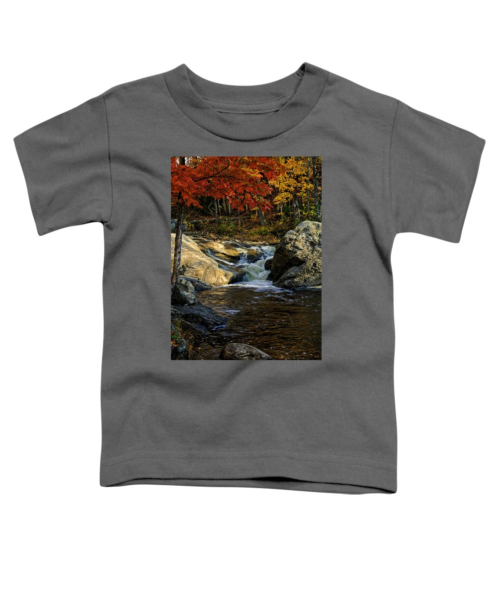 Autumn Toddler T-Shirt featuring the photograph Stream In Autumn No.17 by Mark Myhaver
