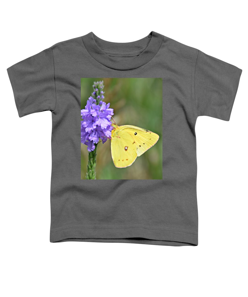 Sulfur Butterfly Toddler T-Shirts