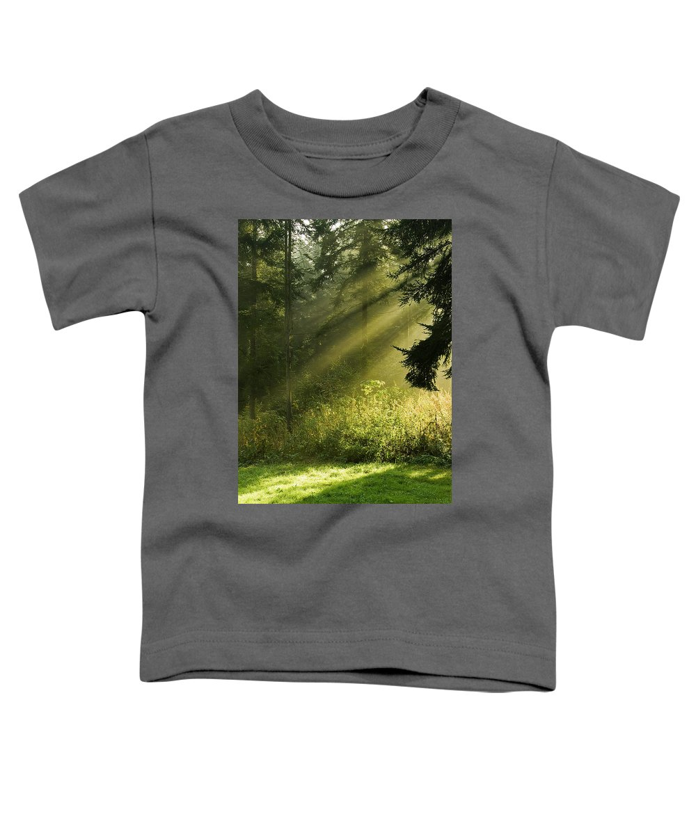 Nature Toddler T-Shirt featuring the photograph Sunlight by Daniel Csoka
