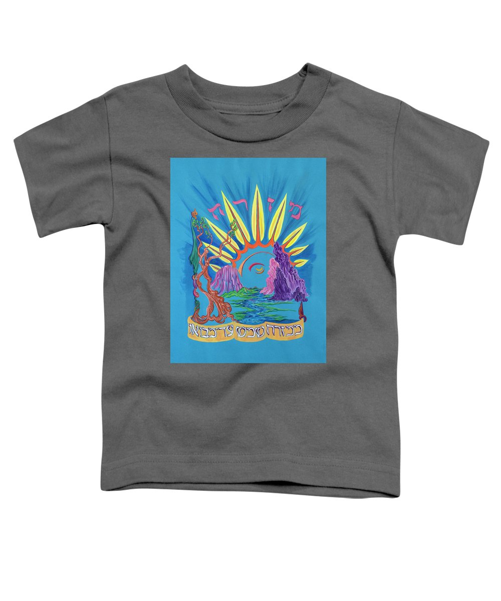Mizrach Paintings Toddler T-Shirts