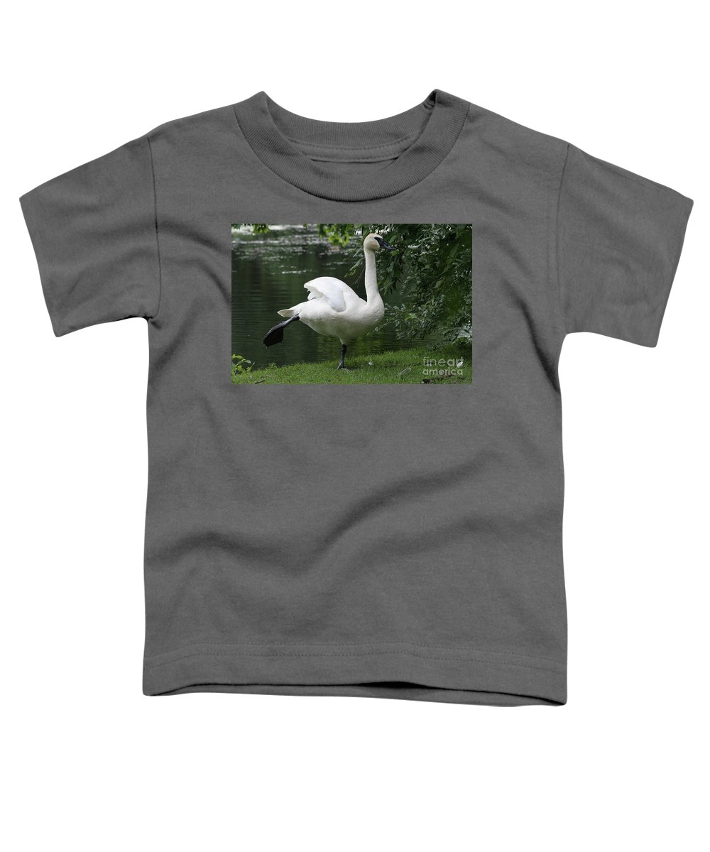 Swan Toddler T-Shirt featuring the photograph Swan Lake #2 by Judy Whitton