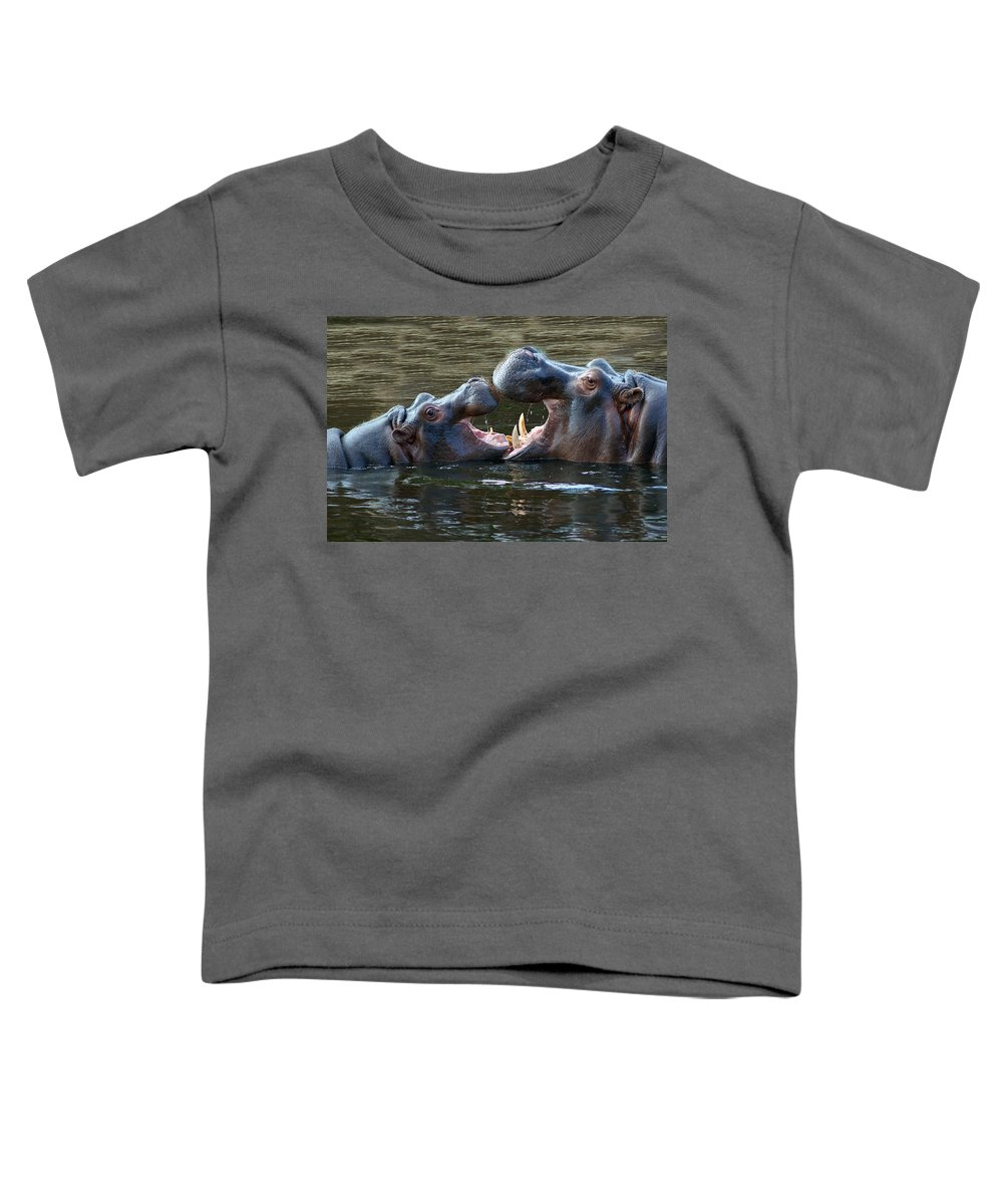 Werribee Toddler T-Shirt featuring the photograph That Was Funny Mum by Kathryn Potempski