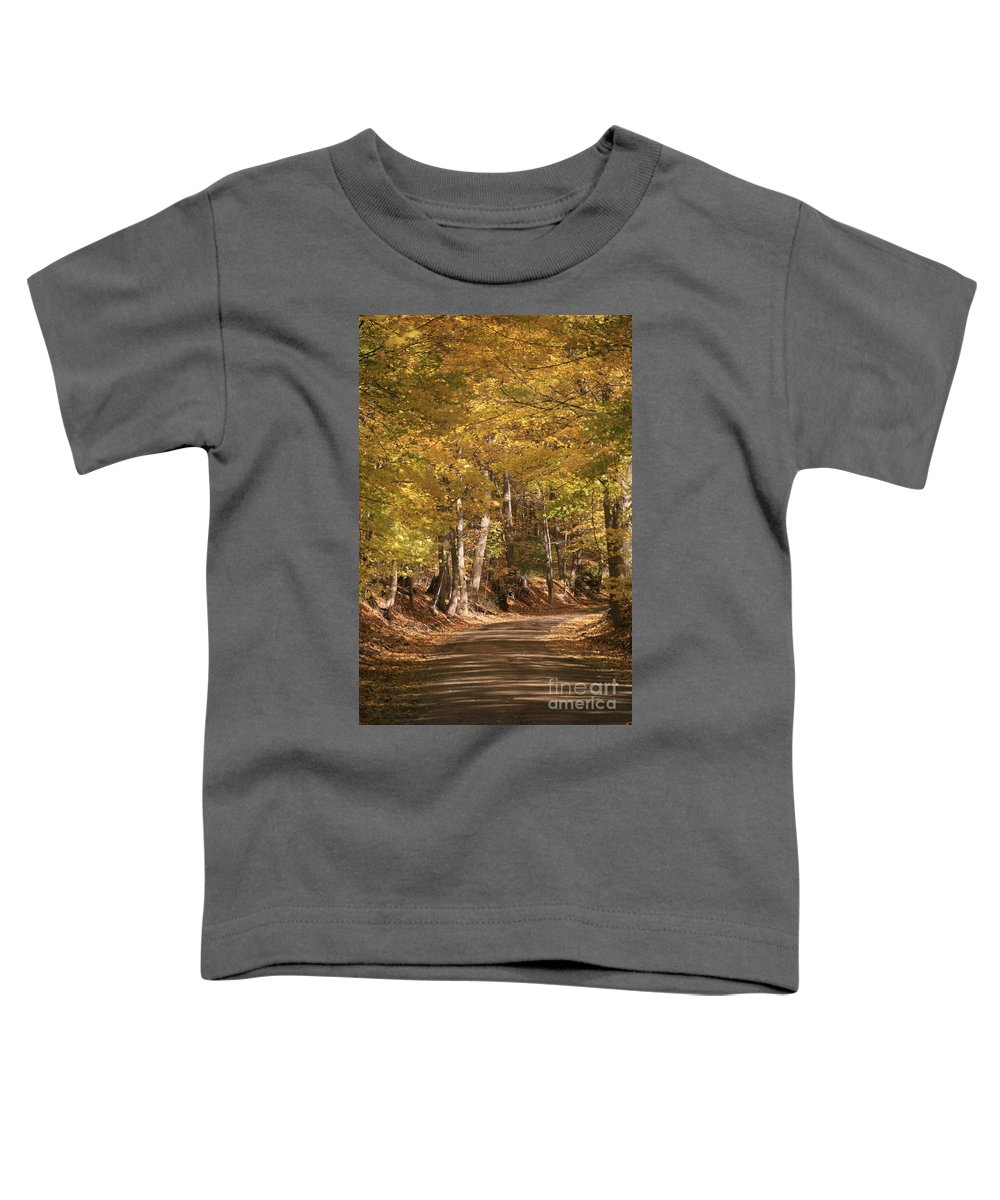 Golden Toddler T-Shirt featuring the photograph The Golden Road by Robert Pearson