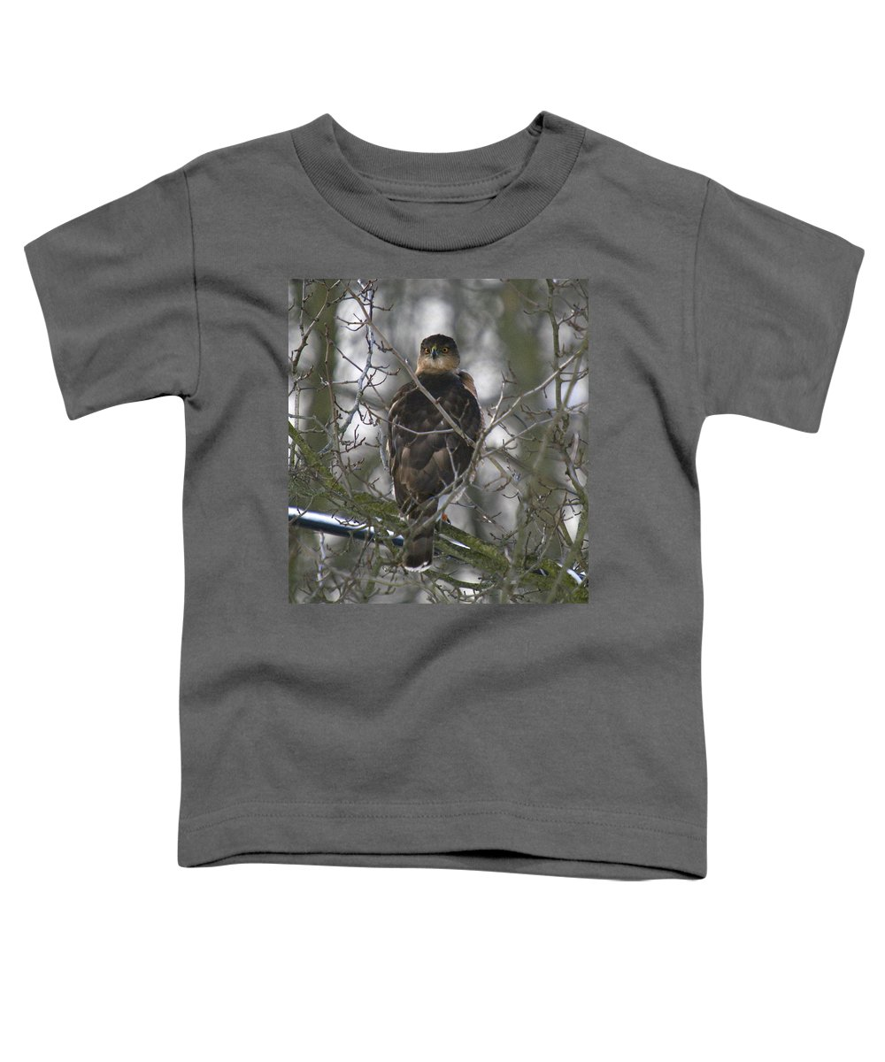 Bird Toddler T-Shirt featuring the photograph The Hawks Have Eyes by Robert Pearson