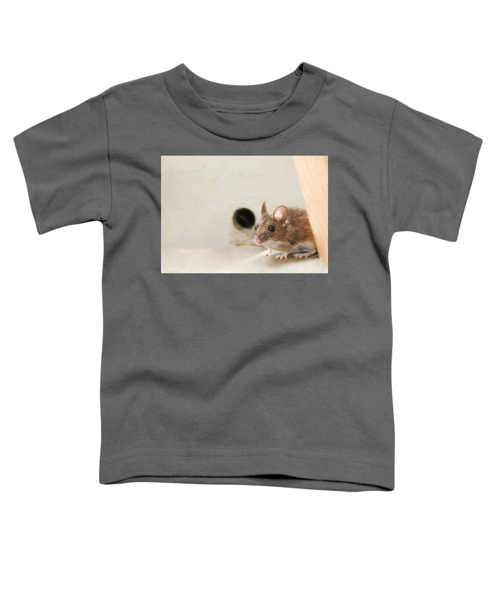 Fauna Toddler T-Shirt featuring the photograph The House Mouse by Heike Hultsch