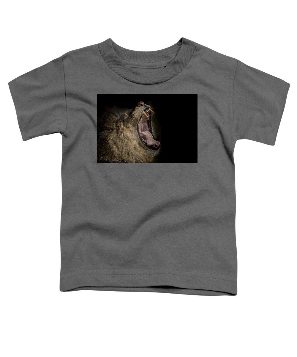Low Key Toddler T-Shirts
