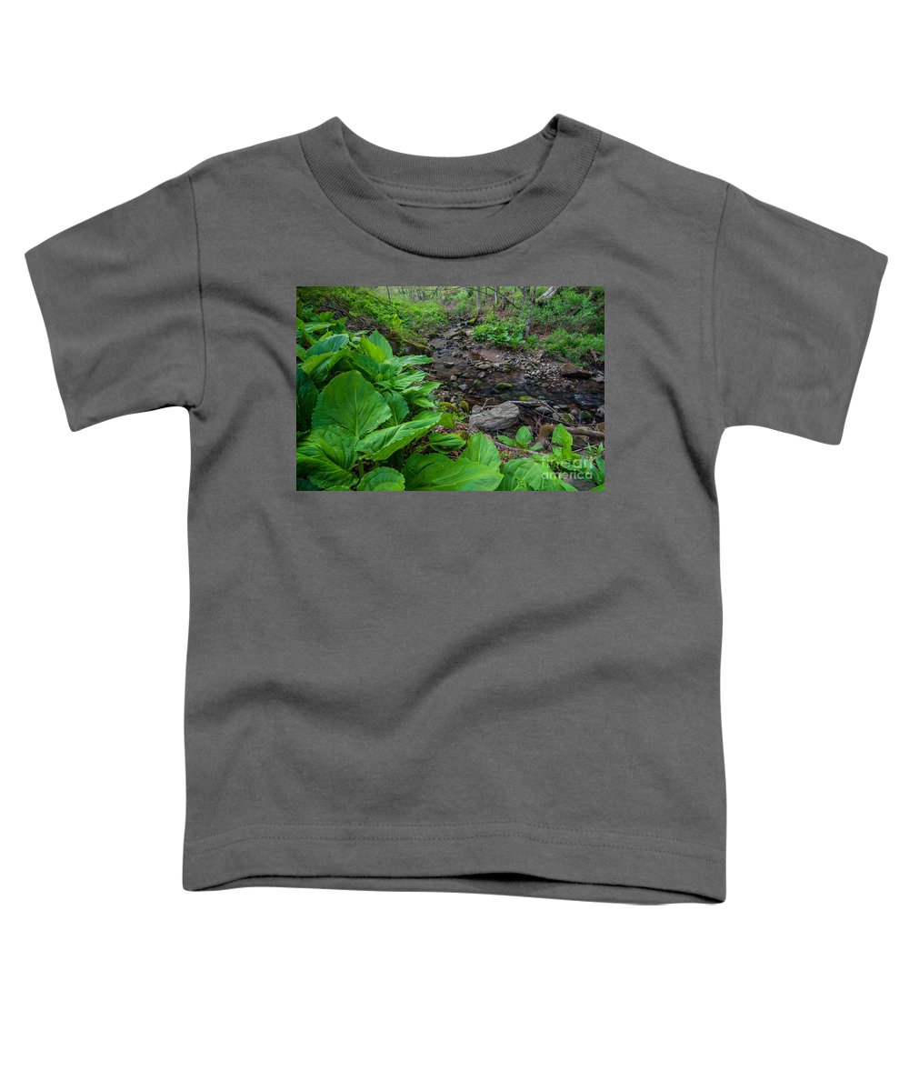 Brian E. Tierney Preserve Toddler T-Shirt featuring the photograph Tierney Springtime - New England Forest by JG Coleman